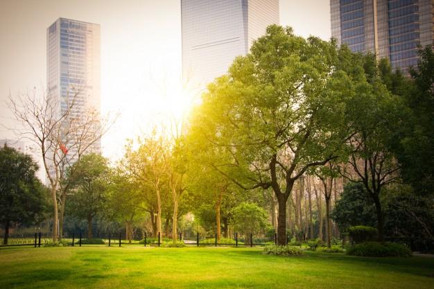 11 Objetivo: Ciudades y comunidades sostenibles